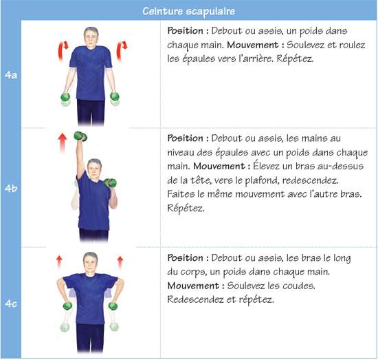 Voici des exemples d'exercices de renforcement musculaire